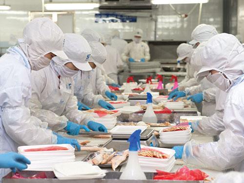 Năm 2014, Công ty CP Sài Gòn Food đưa ra chỉ tiêu xuất khẩu khoảng 6.500 tấn sản phẩm