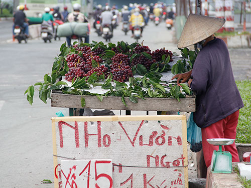 Nho Trung Quốc được người bán rong gắn mác nho vườn ở Ninh Thuận bán với giá 20.000-30.000 đồng/kg Ảnh: Lương Sơn