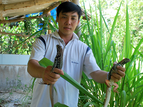 Anh Nguyễn Thanh Tuấn giới thiệu nhông giống