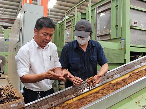 Anh Tô Ái Quốc (Nhà máy Thuốc lá Khánh Hội - bên trái) trong xưởng kiểm tra nguyên liệu