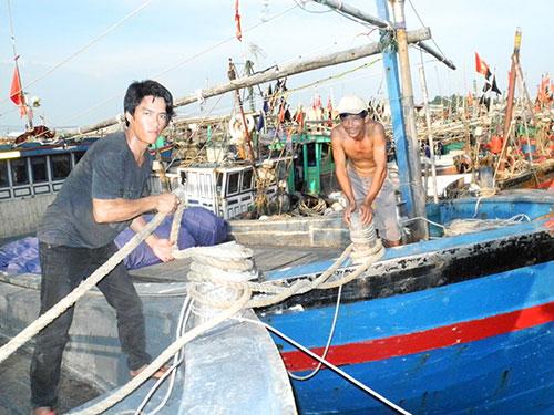 Ngư dân Hải Phòng neo đậu tàu thuyền để tránh bãoẢnh: Trọng Đức
