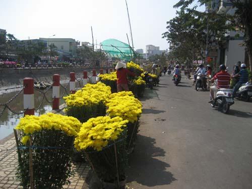Hoa kiểng ở bờ kè Hồ Xáng Thổi vẫn còn rất nhiều nhưng người mua cứ thưa dần
