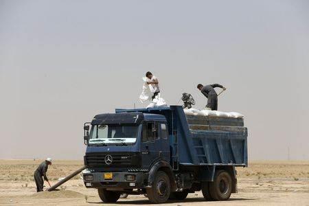 A farmer loads wheat grains onto a truck near the town of Makhmur