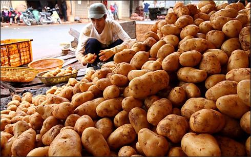 Trên thị trường vẫn đầy rẫy hàng nông sản có xuất xứ từ Trung Quốc (Ảnh: KT)