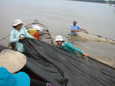 """Đánh bắt cá mờm, cá cơm phải dùng """"lưới cước"""""""