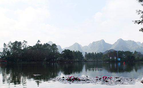 Suối Yến - chùa Hương mùa hoa súng