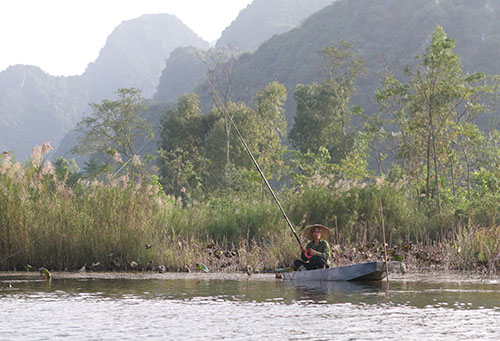 Xa xa trong nắng vàng, một ngư phú giương câu cùng cái nhìn thân thiện với những người khác thập phương bên cạnh hàng cỏ lau cao vút