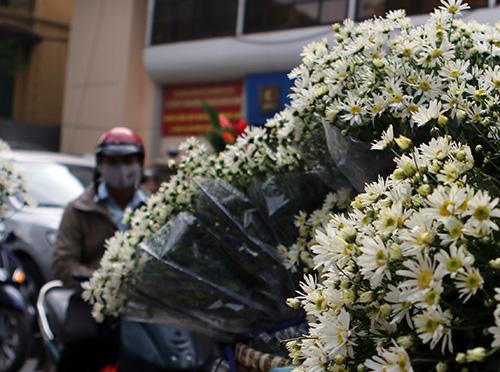 Những cành hoa trắng nhỏ dịu dàng khiến lòng người dịu lại, quên đi cái xô bồ cuộc sống