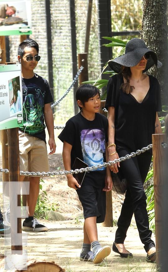 Pax Thiên cùng đại gia đình thăm vườn thú ở Úc
