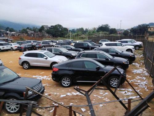 Hàng chục xe sang và siêu sang tại cửa khẩu Bắc Phong Sinh đã bị thu giữ trong cuộc đột kích - Ảnh: LĐO