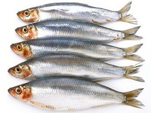 Axít béo omega-3 trong cá có nhiều lợi ích cho sức khỏe Ảnh: The Telegraph