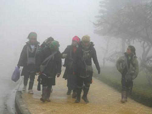 Thị trấn Sa Pa (Lào Cai) đang chịu đợt lạnh mạnh nhất từ đầu đông, xuất hiện sương muối - Ảnh minh họa