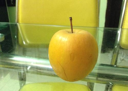 Quả táo để 9 tháng không hư