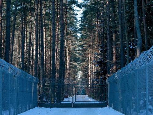 Dây thép gai rào dày đặc bên ngoài nơi được cho là trại giam bí mật của CIA gần làng Stare Kiejkuty của Ba Lan Ảnh: Reuters