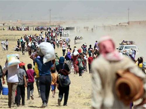 Hàng ngàn người Yezidi tìm đường chạy khỏi núi Sinjar Ảnh: Telegraph