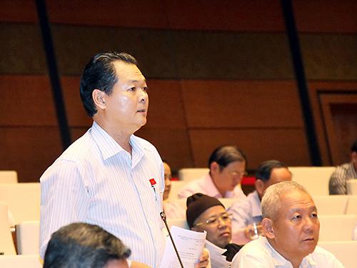 ĐB Trương Minh Hoàng (Cà Mau) phát biểu tại phiên họp Ảnh: Hoàng Ngọc