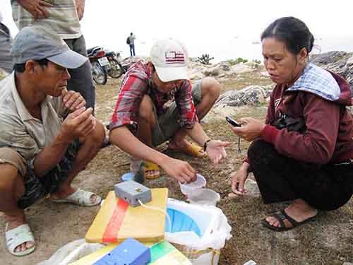 Mua bán tôm hùm trắng ở xã An Ninh Đông, huyện Tuy An, tỉnh Phú Yên