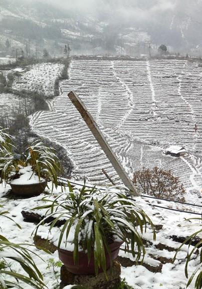 Tuyết phủ trắng xoá những rẻo ruộng bậc thang khu vực đèo Ô Quý Hồ