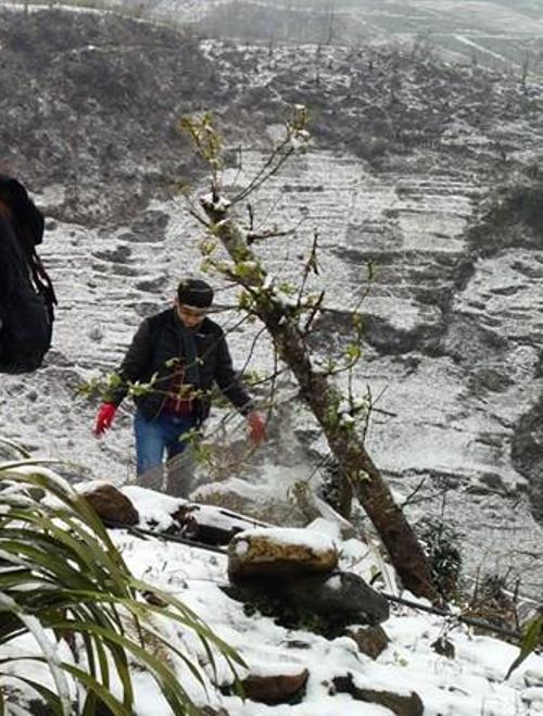 Du khách chơi tuyết tại Thác Bạc (Sa Pa)