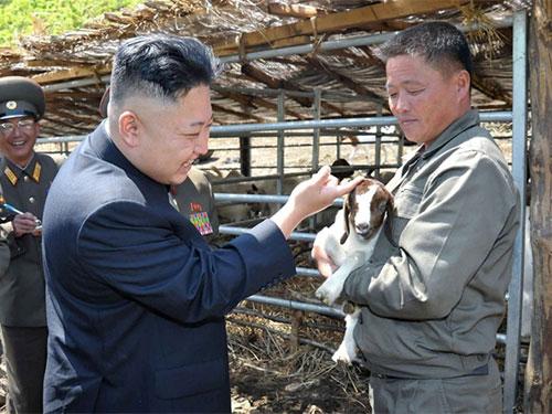 Nhà lãnh đạo Triều Tiên Kim Jong-un vuốt ve một chú dê con trong chuyến thăm trại gia súc.  Ảnh: KCNA