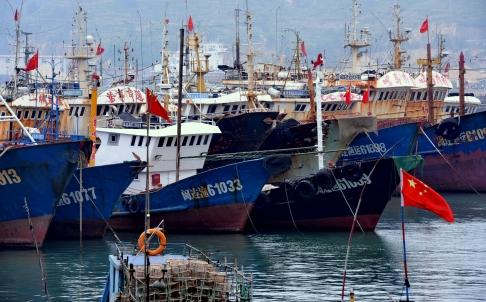 Tổ chức hòa bình xanh cáo buộc tàu cá Trung Quốc đánh bắt trái phép ở vùng biển Tây Phi. Ảnh: Tân Hoa Xã