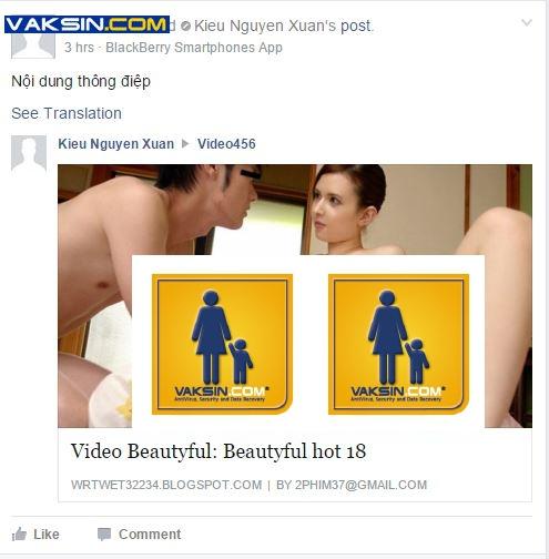 Một ví dụ về Vietnam Rose trên Facebook Indonesia. Ảnh: Vaskin.com