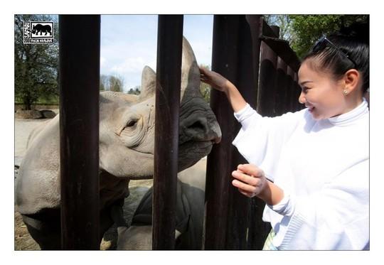 Thu Minh là đại sứ bảo vệ động vật hoang dã