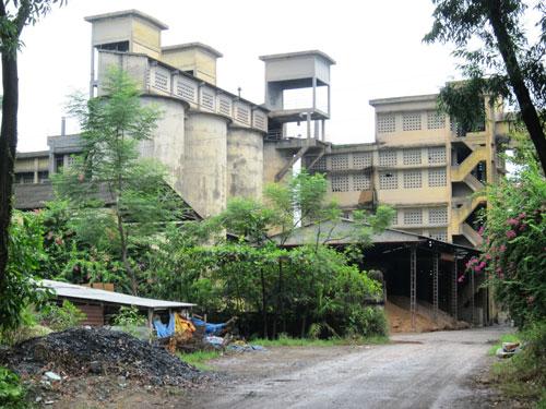Nhà máy Xi măng Long Thọ gây ô nhiễm rất nặng nề