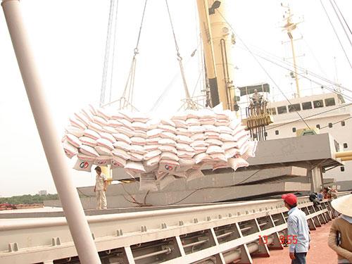 Xuất khẩu gạo trong năm 2015 dự báo sẽ gặp nhiều khó khăn Ảnh: NGỌC TRINH