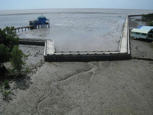 Một đoạn Mũi Cà Mau không còn sạt lở từ khi có đê biển
