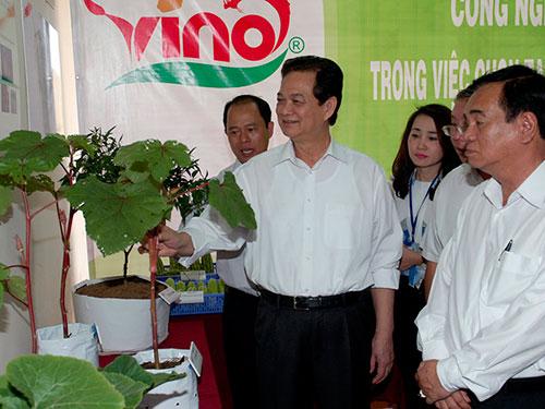 Thủ tướng Nguyễn Tấn Dũng thị sát Trung tâm Công nghệ sinh học  tỉnh Đồng Nai Ảnh: NHẬT BẮC