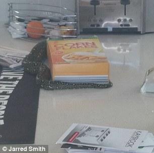 Anh Smith phát hiện một cái gì đó có vảy gần hộp bắp. Ảnh: Jarred Smith