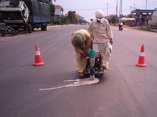 Tổ kỹ thuật của Tập đoàn Sơn Hải khoanh vùng để theo dõi và xử lý các điểm bị tưới hóa chất