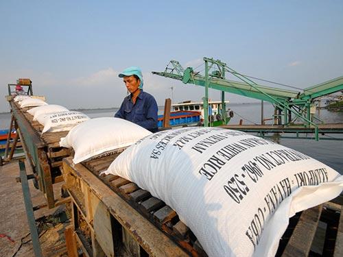 Gạo Việt Nam có tiếng mà không có miếngẢnh: NGỌC TRINH