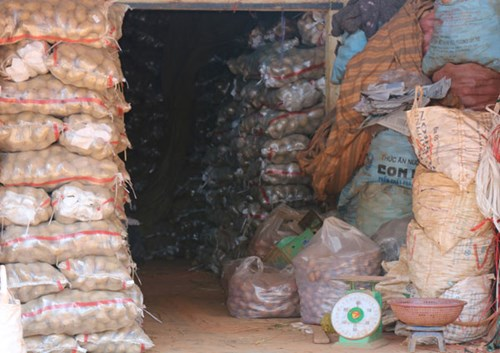 Khoai tây Trung Quốc tràn ngập chợ Nông sản Đà Lạt 3