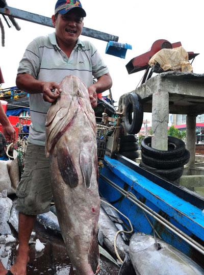 Ngư dân Trần Văn Thời bên con cá bống mú đánh bắt được ở Hoàng Sa. Đây là loài cá đem lại hiệu quả rất cao cho bà con ngư dân Quảng Ngãi