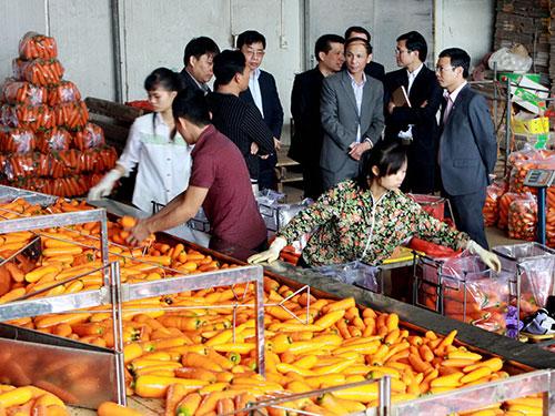 Cùng với sự sôi động của thị trường Tết, các loại thực phẩm bẩn cũng đua nhau bung hàng. Trong ảnh: Kiểm tra thực phẩm Tết tại Hà Nội Ảnh: NGỌC DUNG
