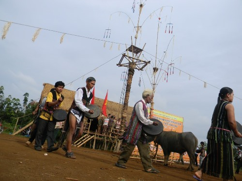Rạng sáng vào ngày chính của nghi lễ, bà con đánh chiêng đi vòng quanh con trâu trước khi nó được dâng cho Yàng