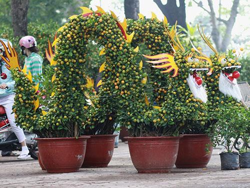 Những cây quất uốn hình rồng - phụng cầu kỳ được bày bán tại Công viên Gia Định Ảnh: GIA MINH