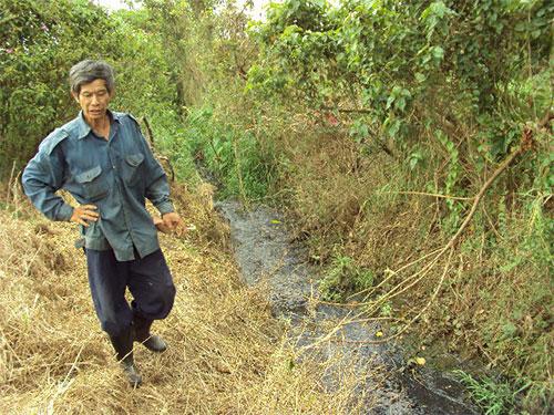 Những dòng suối ô nhiễm như thế này ở Lâm Đồng đang đe dọa sông Đồng Nai Ảnh: Minh Hải
