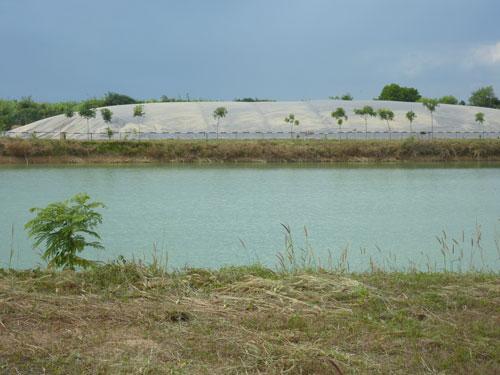 Chất thải được đưa vào hệ thống biogas