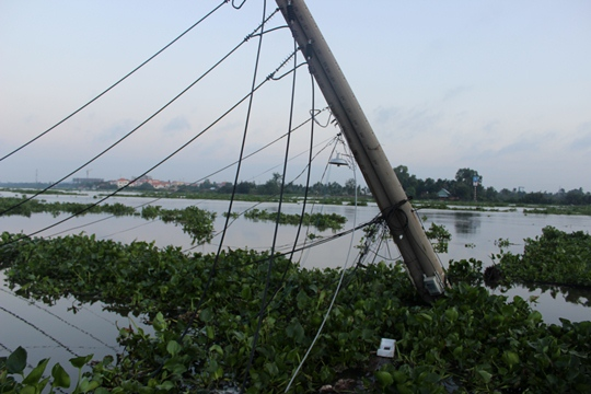 Sạt lở cuốn người, nhấn chìm nhà xuống sông Sài Gòn