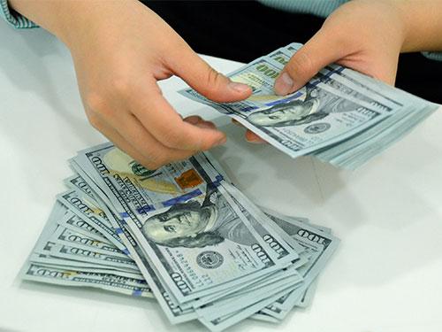 NH Nhà nước luôn sẵn sàng bán ra USD khi thị trường ngoại tệ có dấu hiệu căng thẳng Ảnh Tấn Thạnh
