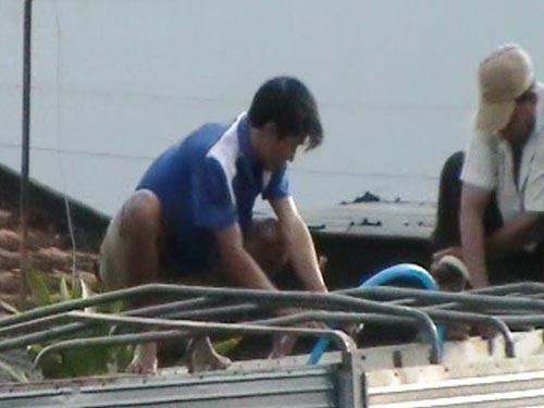 """Những con bò trong thùng xe tải đang được cho """"ăn"""" nước bằng chiếc ống nhựa"""