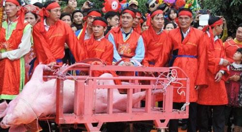 Lễ hội chém lợn ở Bắc Ninh được đánh giá là dã man