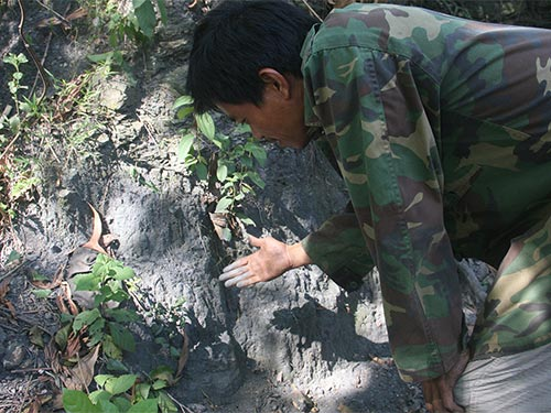 Vùng đất tại xã Tiên An có màu đen bóng tựa ruột bút chì