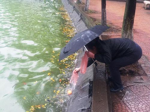 Người dân thả cá chép tại hồ Hoàn Kiếm cùng với mong muốn giữ sạch môi trường
