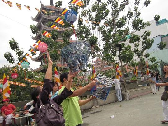 Mở cửa lồng chim để phóng sinh Ảnh: Lê Phong
