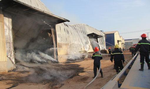 Các chiến sĩ đang nỗ lực dập đám cháy
