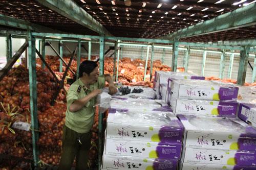 Nhiều thùng trái cây Trung Quốc bán tại chợ đầu mối Thủ Đức không có  nhãn phụ theo quy định